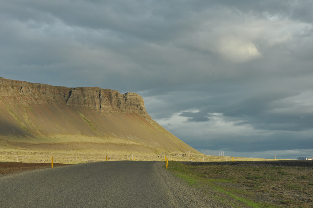 Iceland, the birds' realm – day 10 (1)