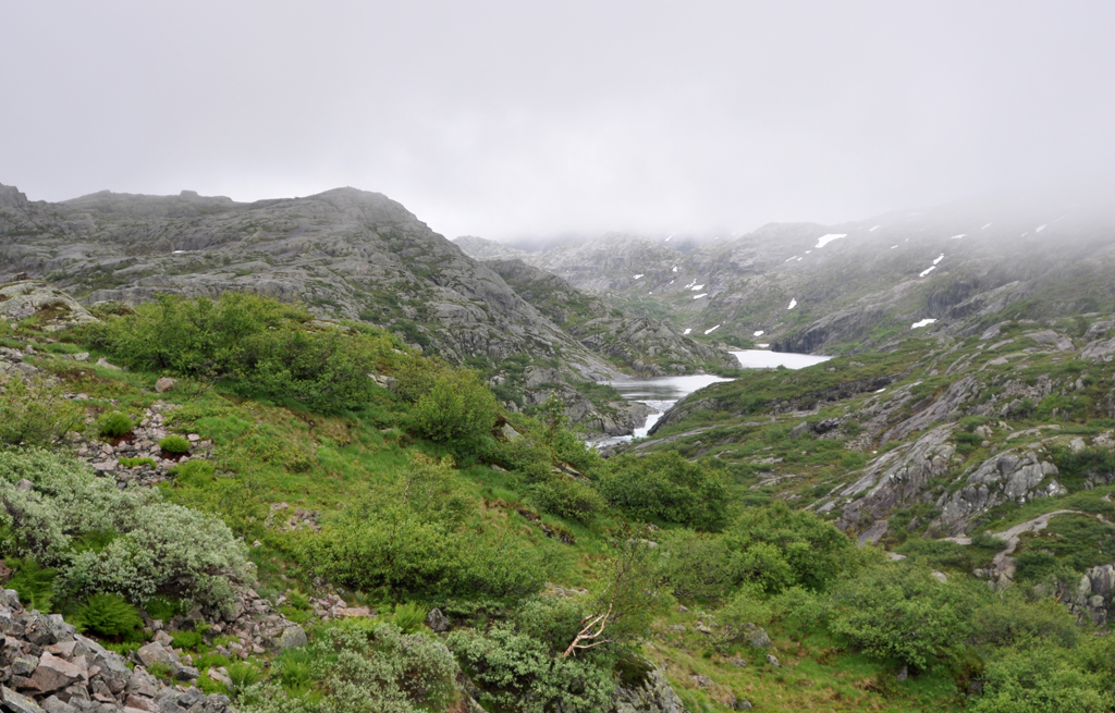 Norway 2012 – 03 Roldal