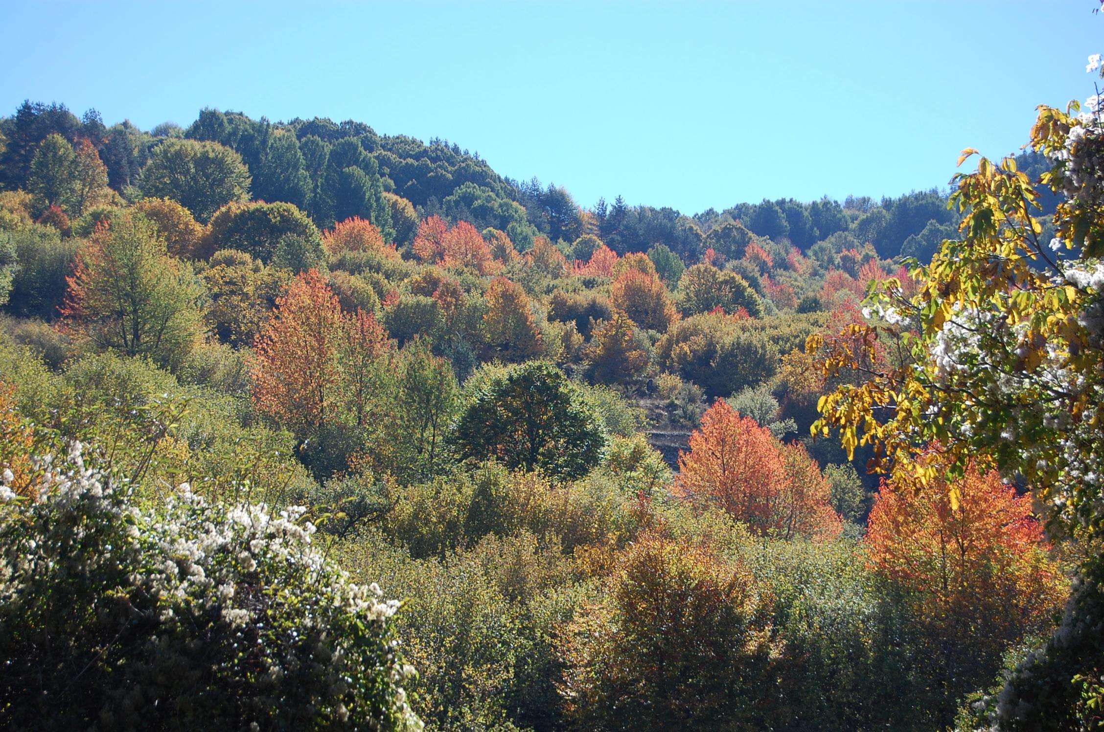 Есенно пътешествие с Шрек – част III-та